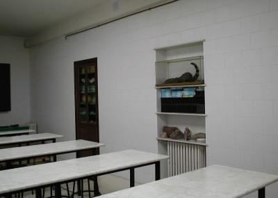 Laboratorio Colegio FEM