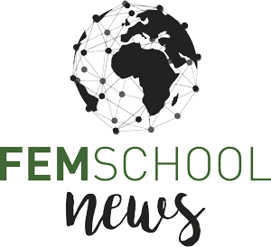Noticias FEM School